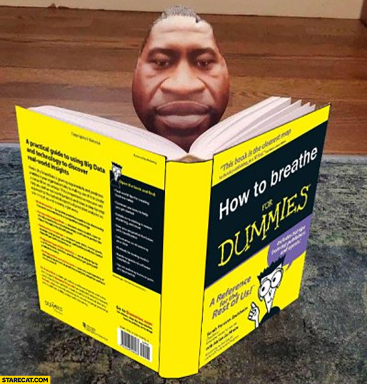 George Floyd how to breathe for dummies book