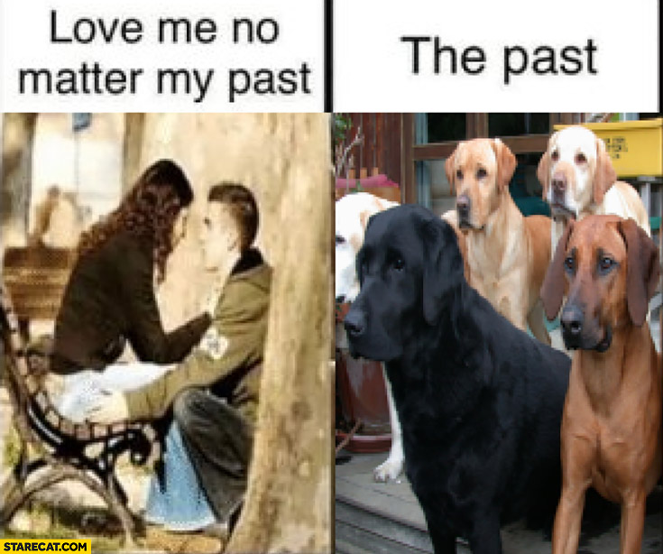 Girl girlfriend love me no matter my past the past dogs
