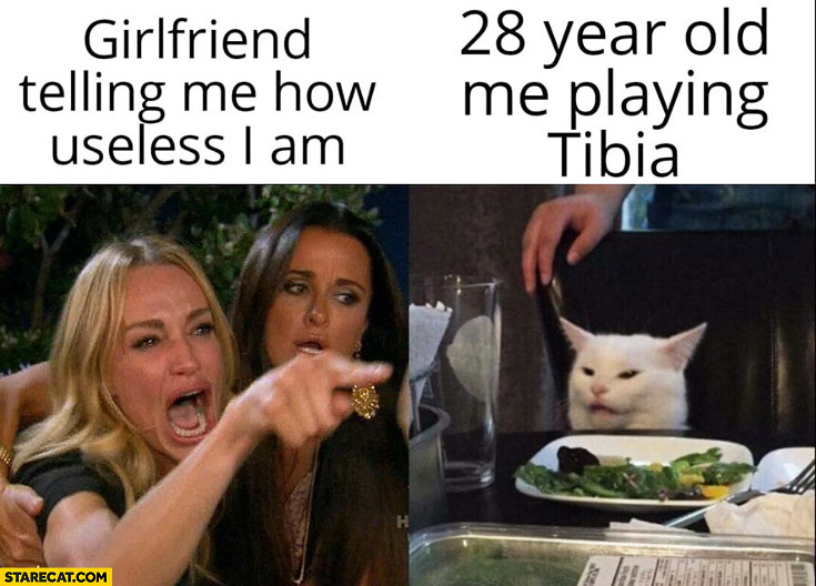 Girlfriend telling me how useless I am, 28 year old me playing Tibia cat