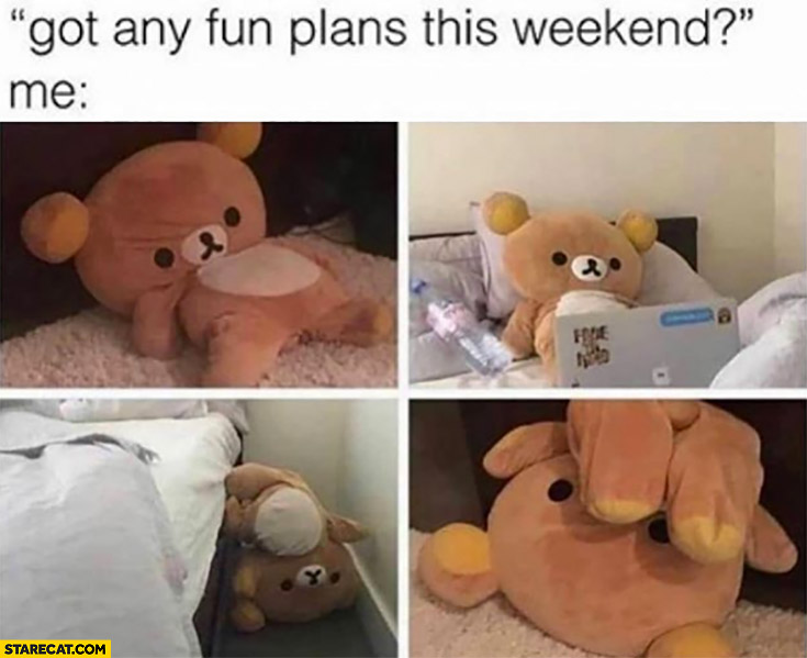 Got any fun plans this weekend me bored teddy bear