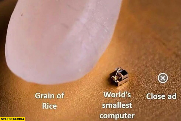 Grain of rice, world's smallest computer, close ad button size comparison