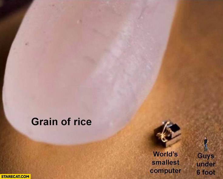 Grain of rice, world's smallest computer, guys under 6 foot