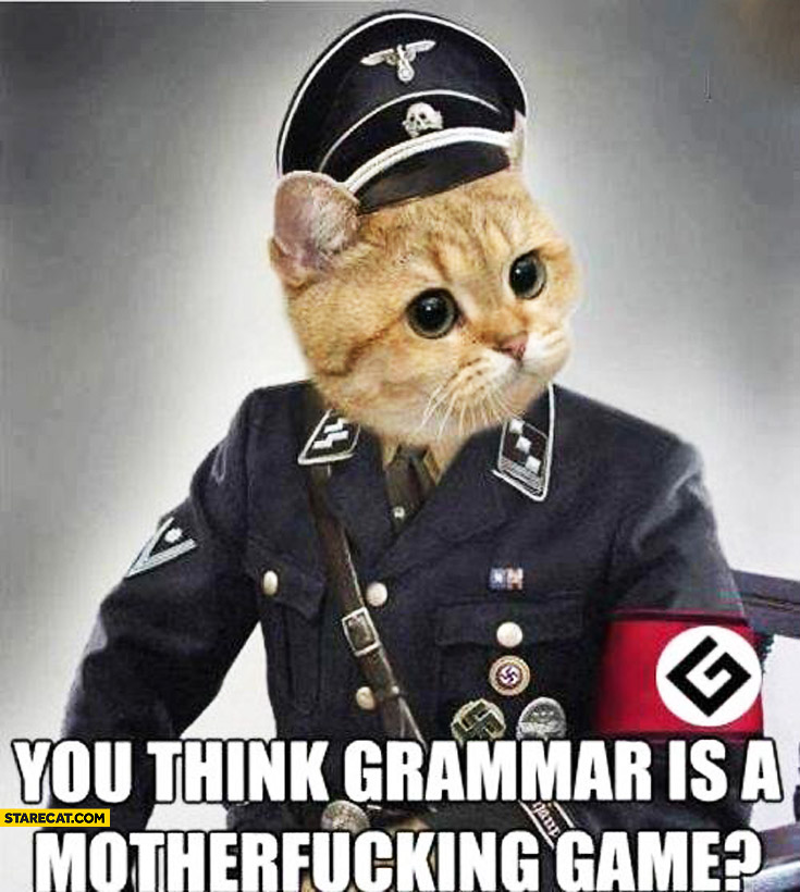 Grammarnazi cat you think grammar is a motherfcking game