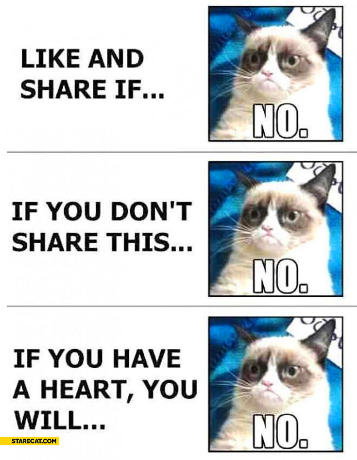 Grumpy Cat like and share if you don't share if you have a heart no