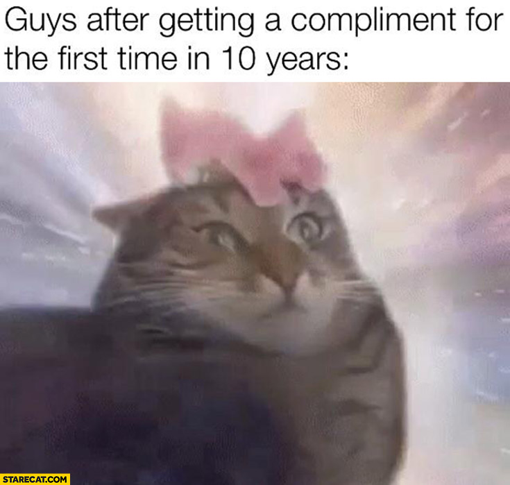 Guys after getting a compliment for the first time in 10 years cat