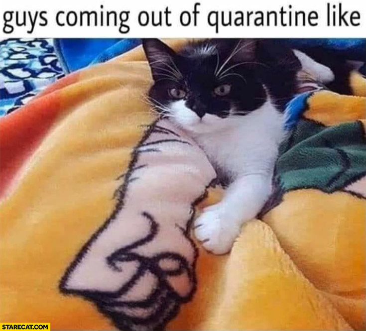 Guys coming out of quarantine be like cat with huge arm