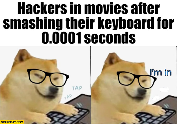Hackers in movies after smashing their keyboard for seconds I'm in doge