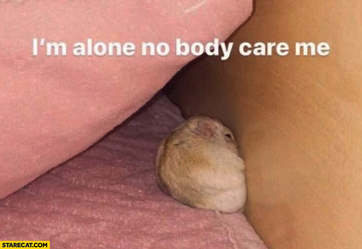 Hamster I'm alone no body care me