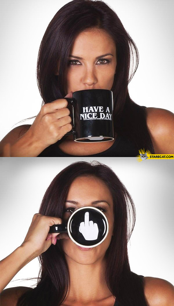 Have a nice day fuck you mug
