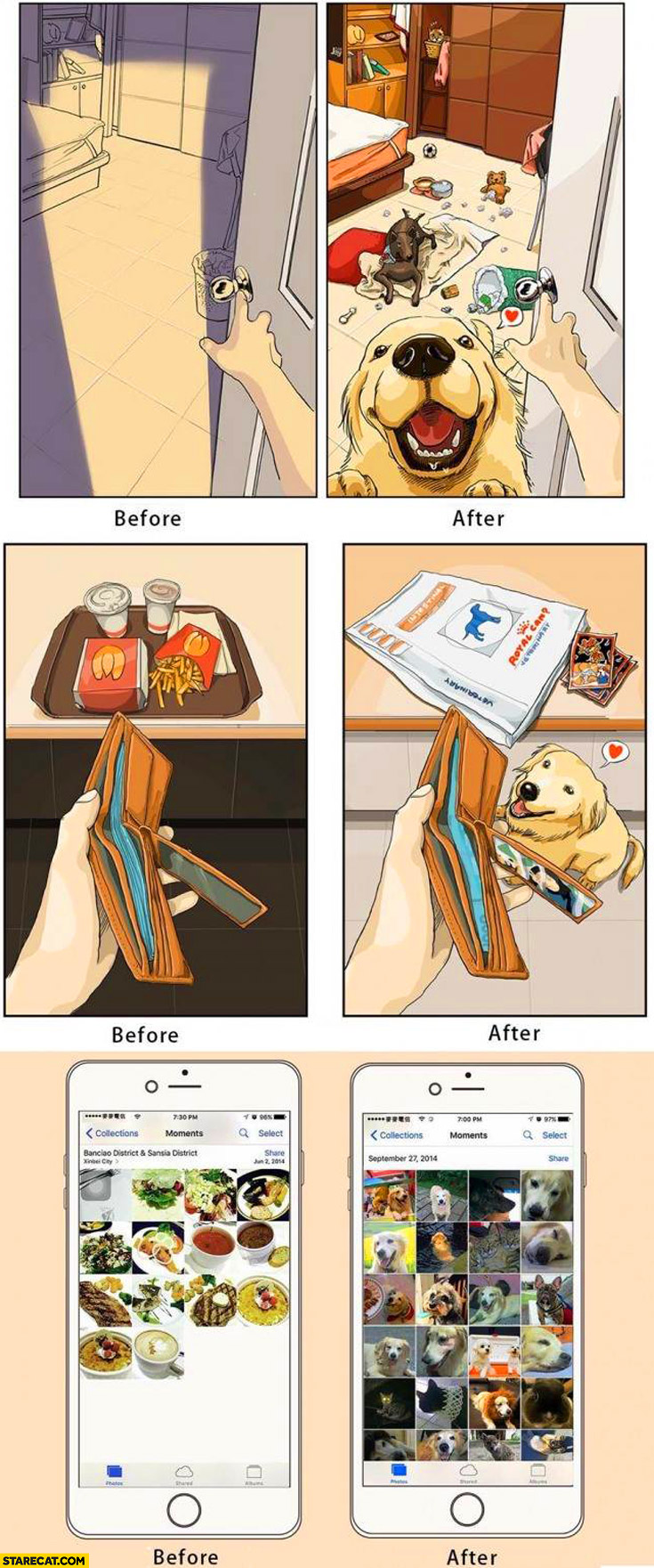 Having dogs before and after comparison