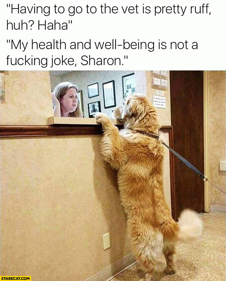 Having to go to vet is pretty rough, huh? My health and well-being is not a joke, Sharon! dog visiting vet