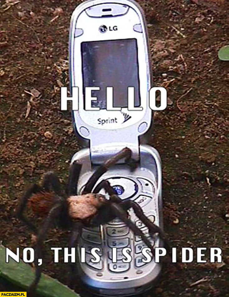 Hello no this is spider calling from a mobile phone