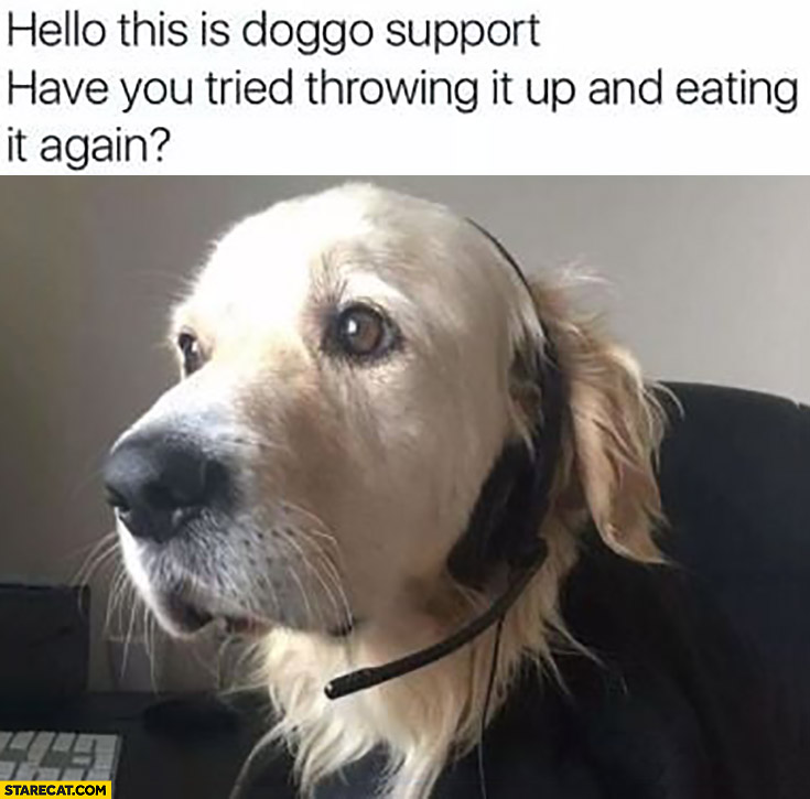 Hello this is doggo support have you tried throwing it up and eating again?