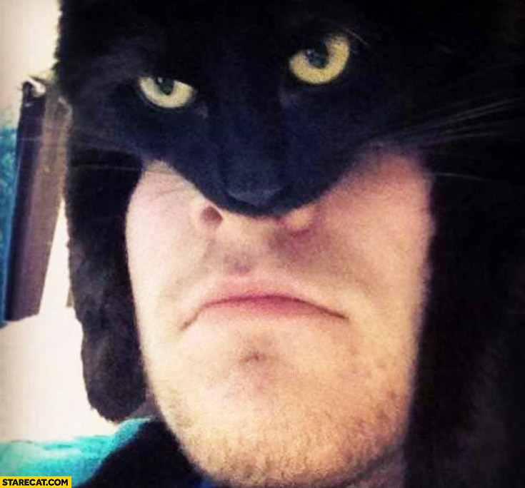 Hero hat made of cat