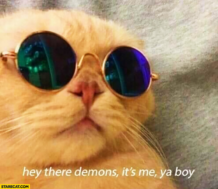 Hey there demons it's me your boy. Cat wearing glasses