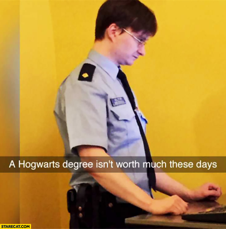 Hogwarts degree isn't worth much these days Harry Potter as airport security worker policeman