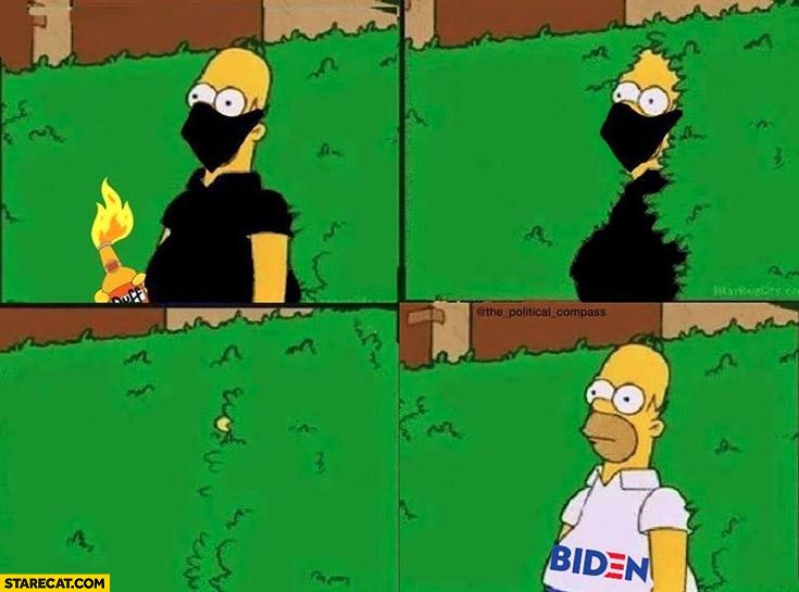 Homer Simpson rebel turns to Biden comic