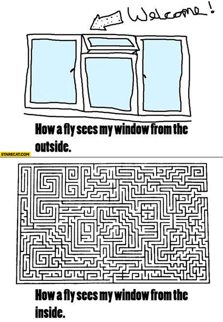 How a fly sees my window from the outside from the inside
