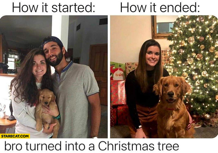 How it started vs how it ended bro turned into a christmas tree