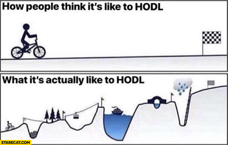 How people think it's like to hodl vs what's it's actually like to hodl stock hold