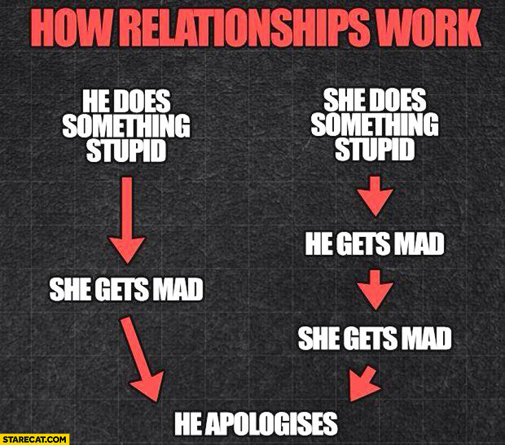 How relationships work: he/she does something stupid, she gets mad, he apologises