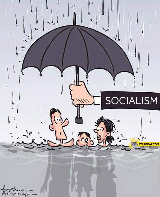 How socialism works?