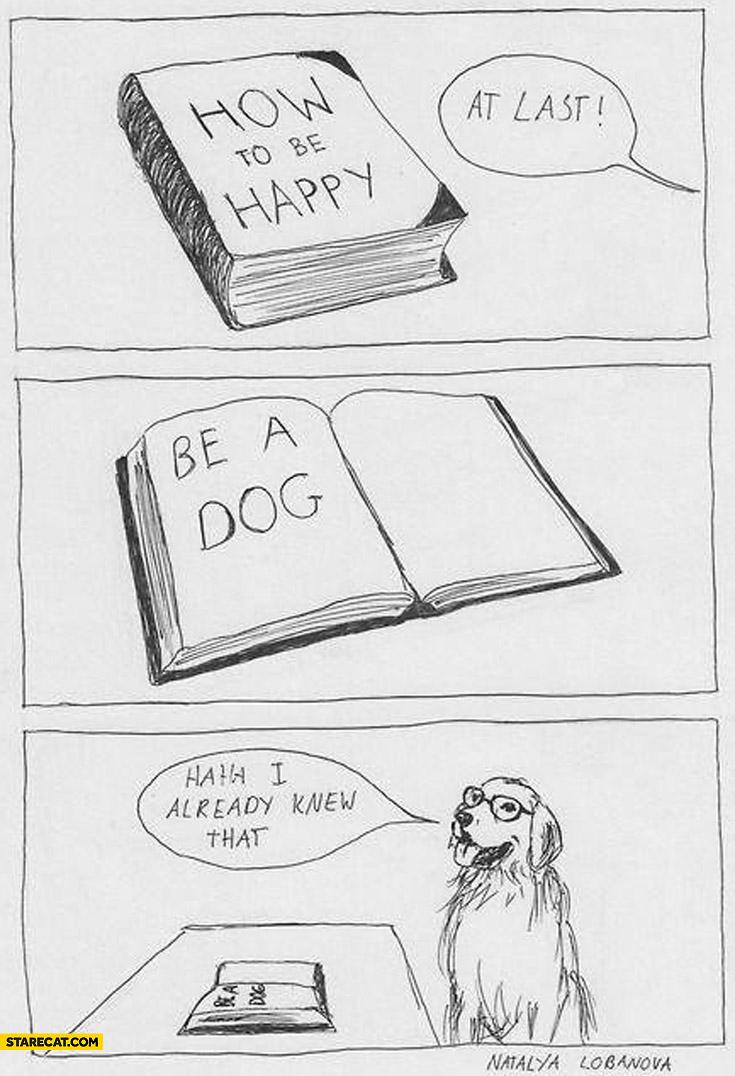 How to be happy be a dog haha I already knew that