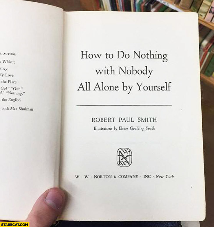 How to do nothing with nobody all alone by yourself book