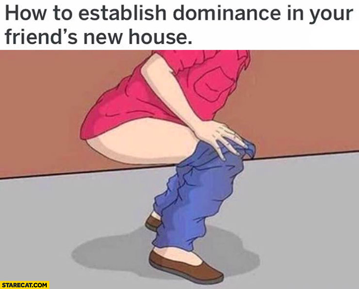 How to establish dominance in your friends new house: by taking dump on the floor