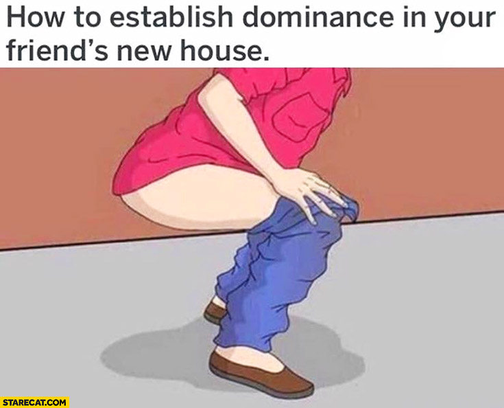 How to establish dominance in your friend's new house: shit it take a dump