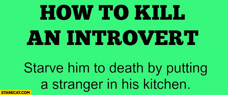 How to kill an introvert: starve him to death by putting a stranger in his kitchen