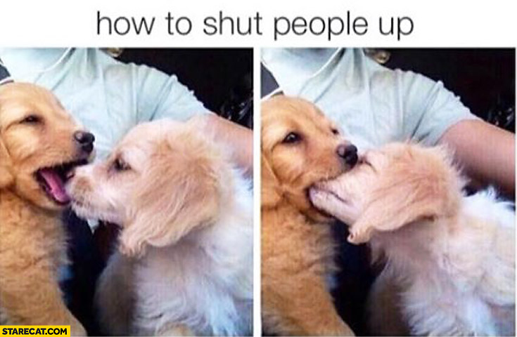 How to shut people up cute dogs