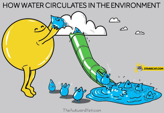 How water circulates in the environment