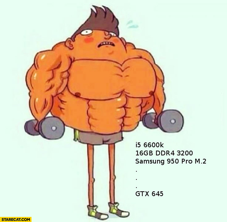 How you look with top processor and RAM but crappy graphics card GTX thin legs