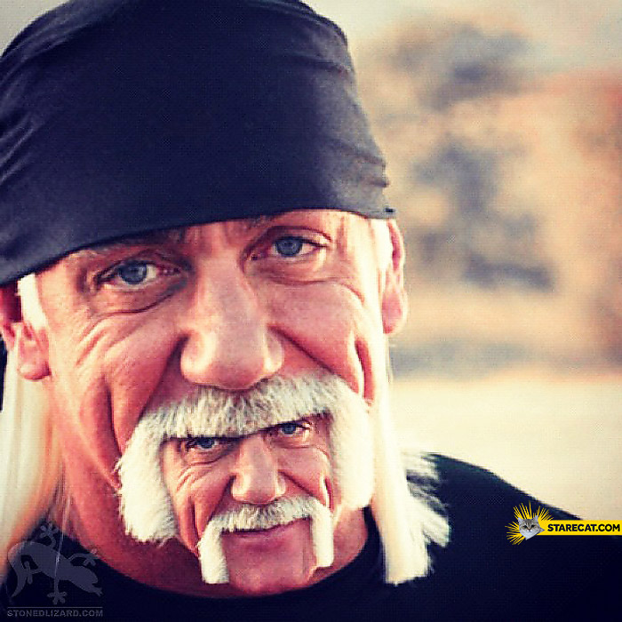 Hulk Hogan double beard