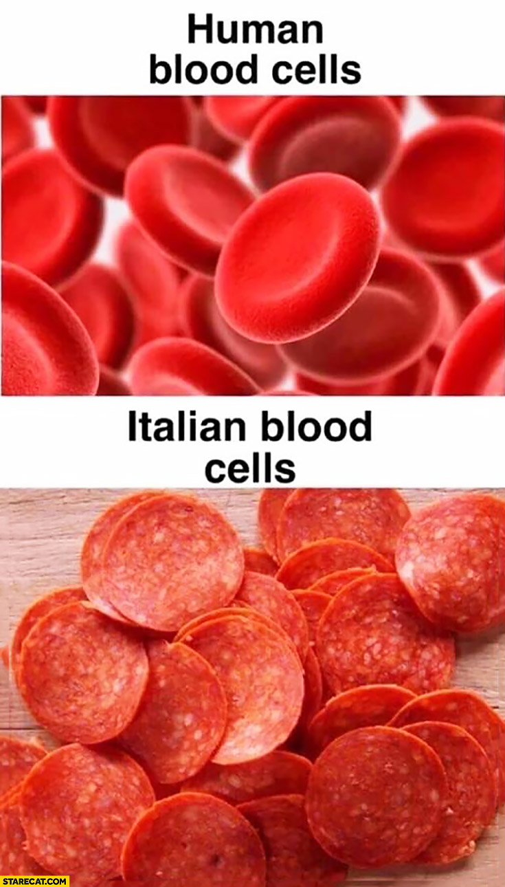 Human blood cells vs Italian blood cells pepperoni salami