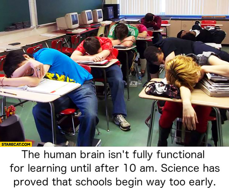 Human brain isn't fully functional for learning until after 10 AM, science has proved that schools begin way too early