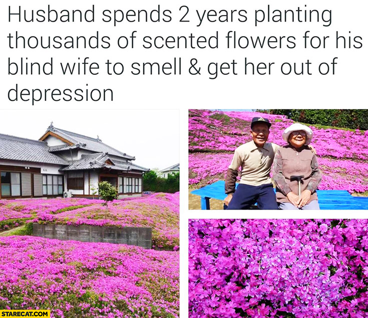 Husband spends 2 years planting thousands of scented flowers for his blind wife to smell and get her out of depression Japan