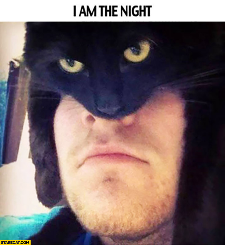 I am the night. Man wearing cat as a hat looking like Batman