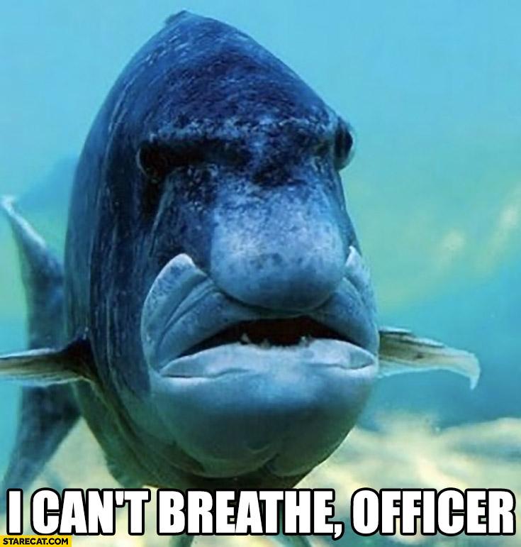 I can't breathe fish George Floyd