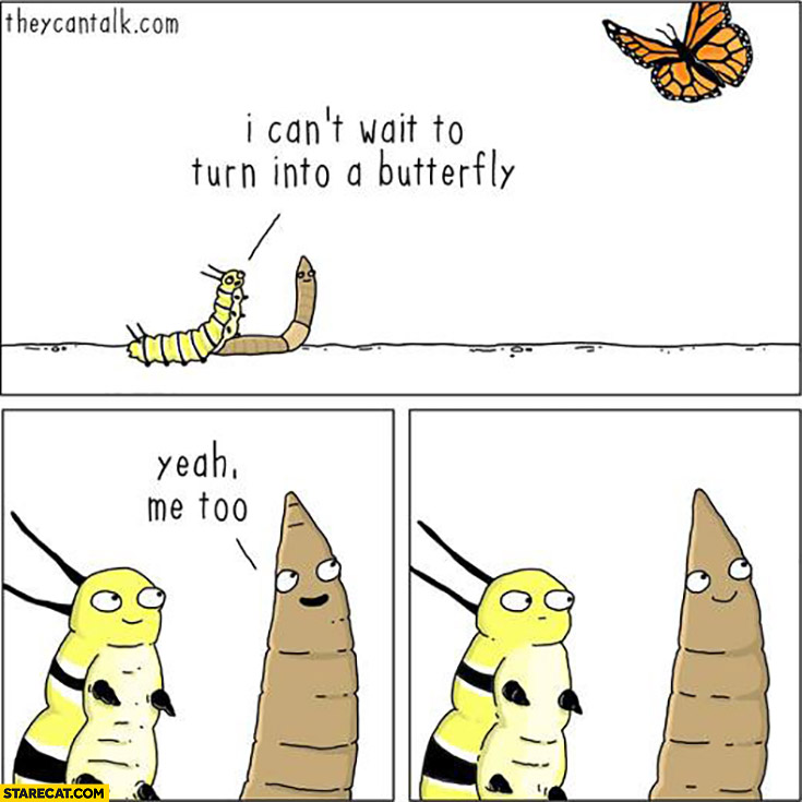 I can't wait to turn into a butterfly. Yeah, me too… worm fail