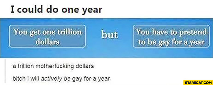 "I could do one year ""you get one trillion dollars but you have to pretend to be gay for a year"", bitch I will actively be gay for a year"