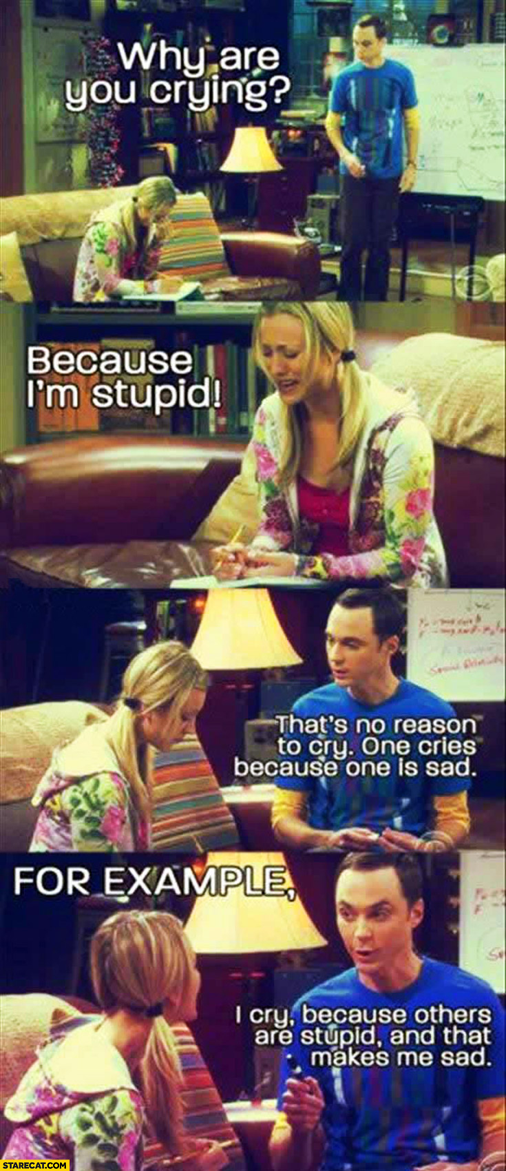 I cry because others are stupid and that makes me sad Big Bang Theory