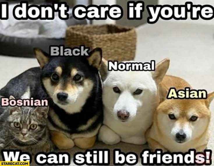 I don't care if you're black, Asian, normal, Bosnian we can still be friends dogs cat