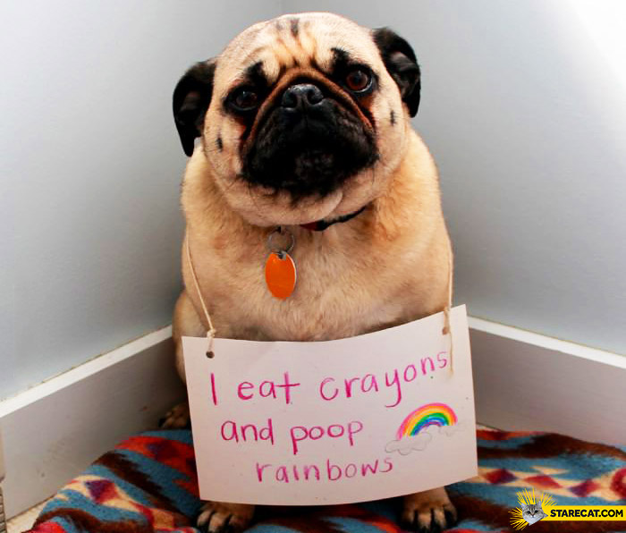 I eat crayons and poop rainbow