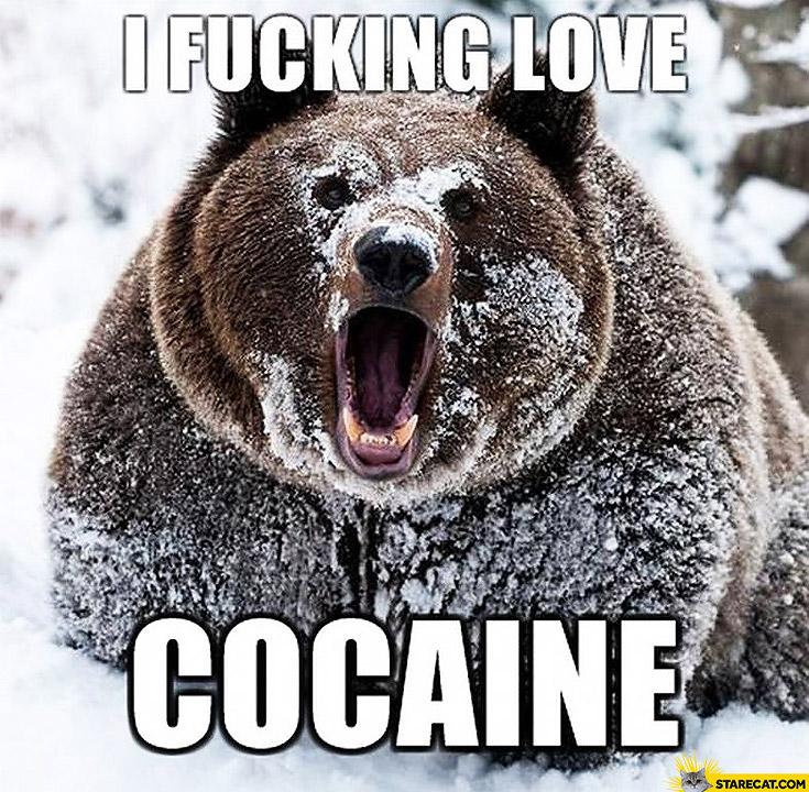 I fucking love cocaine bear