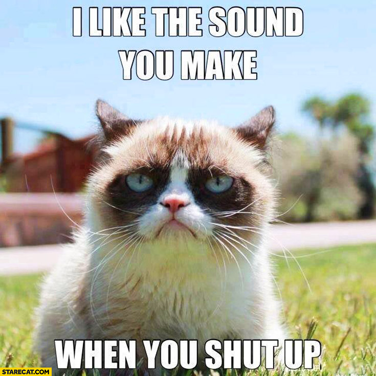 I like the sound you make when you shut up Grumpy