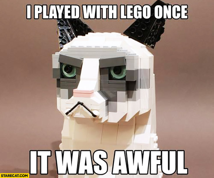 I played with LEGO once it was awful Grumpy Cat made of LEGO