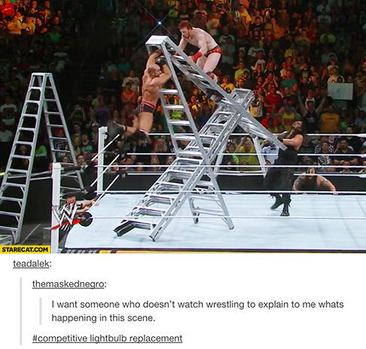 I want someone who doesn't watch wrestling to explain to me what's happening in the scene ladders wrestlers