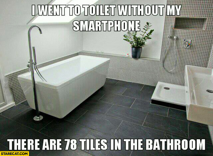 I went to the toilet without my smartphone, there are 78 tiles in the bathroom